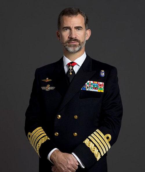 Don Felipe VI, Rey de España